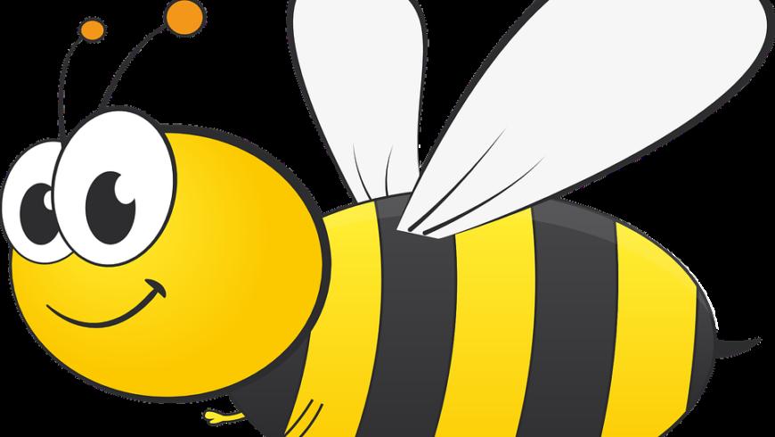 Retour au calme  avec l'abeille