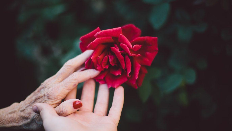 Arthrose des doigts débutante : soulager ses douleurs naturellement