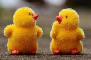 Méditation : respirer la couleur jaune
