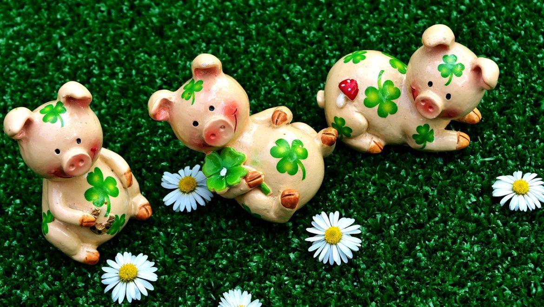 Maîtriser son souffle avec les 3 petits cochons (Haute Garonne)