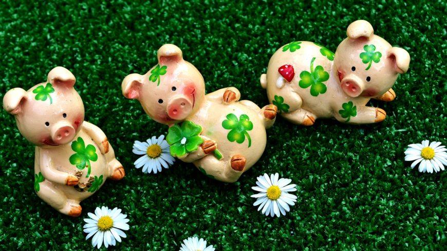 Maîtriser son souffle avec les 3 petits cochons